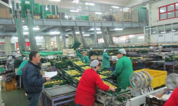 Offerte di lavoro per addetti al confezionamento, posizioni aperte in Campania
