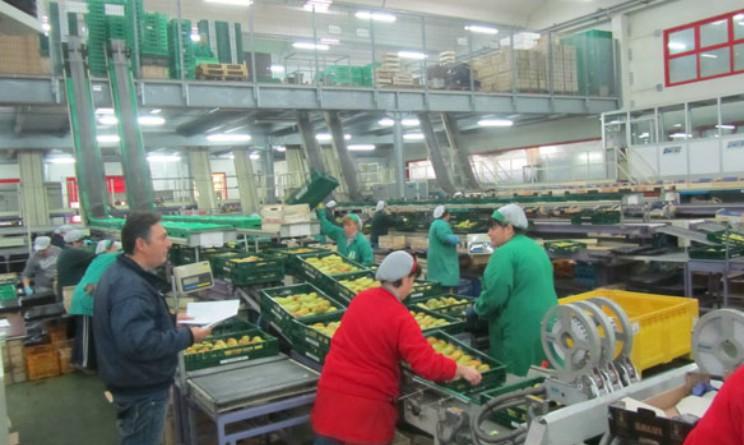 Offerte di lavoro per addetti al confezionamento for Subito offerte di lavoro roma