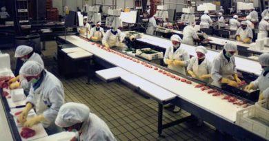 Elpe seleziona 20 addetti al confezionamento alimentare con licenza media