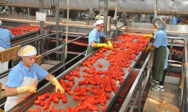 Italtom lavora con noi, 100 posti per operai addetti al confezionamento alimentare