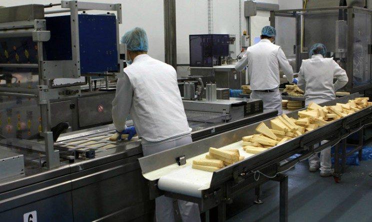 Gi Group assume addetti al confezionamento del formaggio