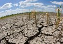 Il riscaldamento globale ci fara perdere 80 milioni di posti di lavoro entro il 2030