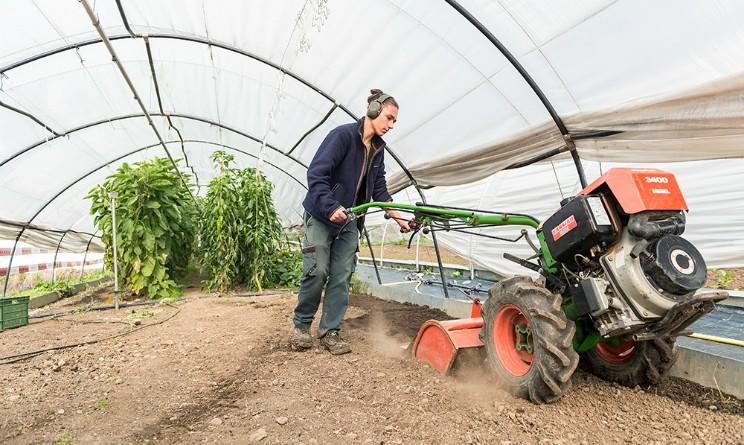 Corso gratuito per addetto al settore agricolo di Umana Forma