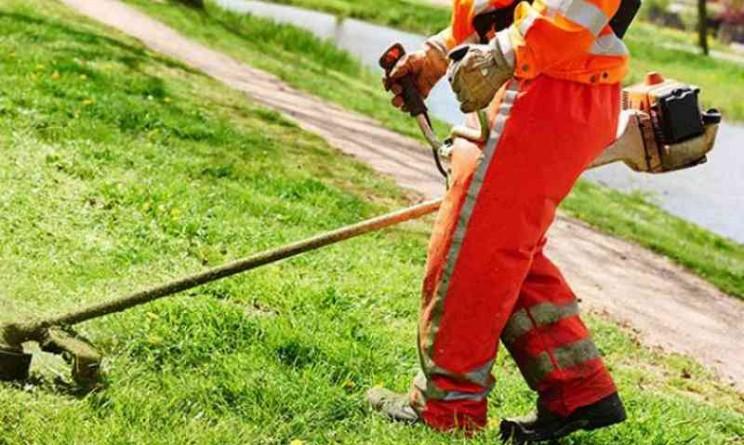 Vietri Sviluppo, bando per 45 addetti alla manutenzione del verde