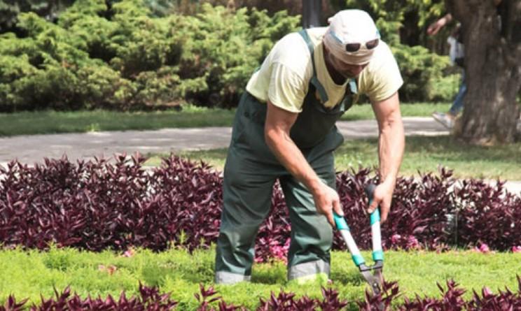 Corso gratuito per addetto al giardinaggio di EnAIP