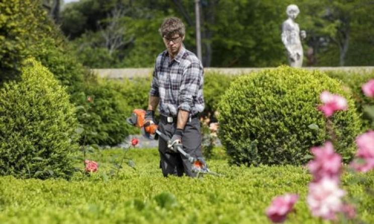 Corso gratuito per giardinieri con tirocinio retribuito